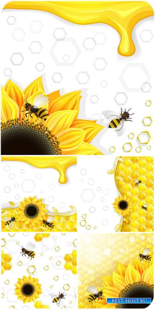 Мед, подсолнухи и пчелы в векторе / Honey, bees and sunflowers vector