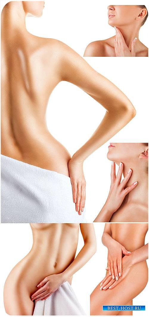 Женское тело, уход за телом / Female body, body care - Stock photo