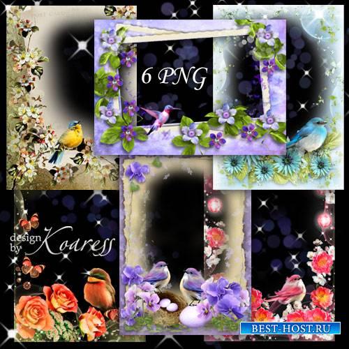 Набор png рамок для фото с птичками и цветами - Птичье пение в день весенни ...