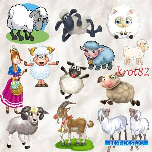 Подборка клипарта на прозрачном фоне – Овцы, козы