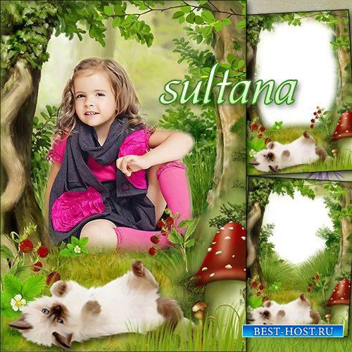 Летняя детская рамка для фотошопа - Маленький котенок
