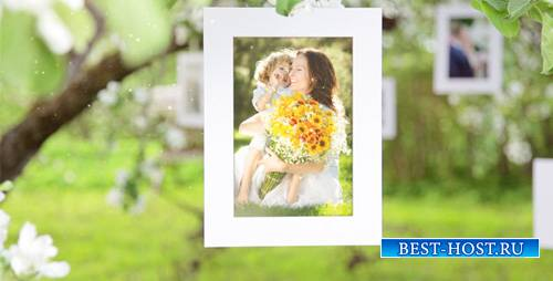 Photo Gallery Blossoms and Bees - Project for After Effects (Videohive)