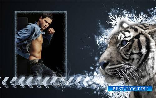 Фоторамка - Грозный тигр