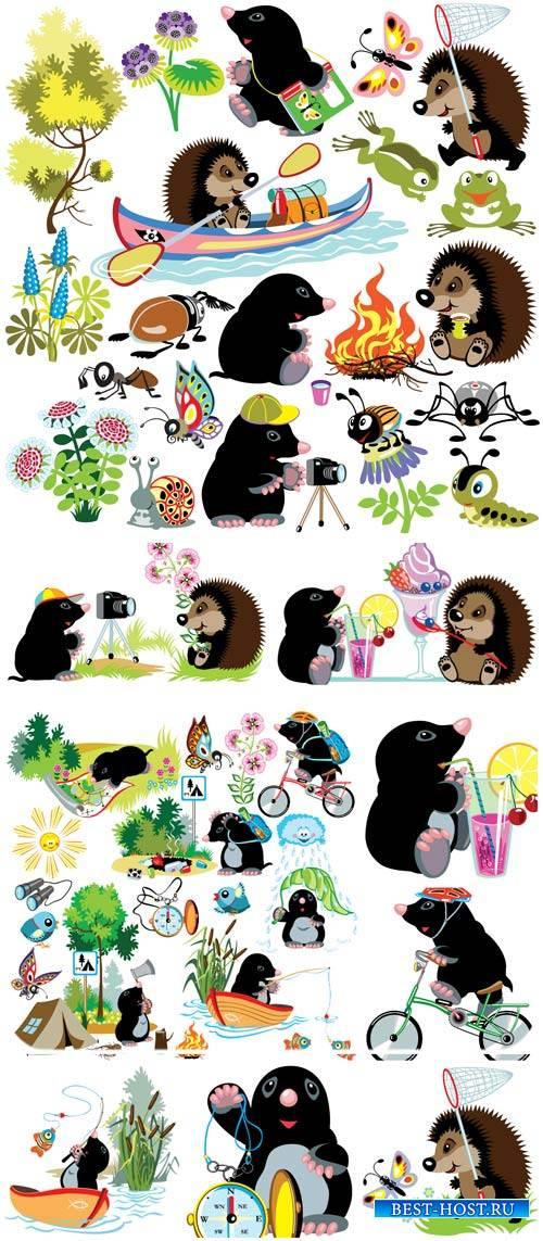 Живоные в векторе, крот и ежик / Vector animals, funny hedgehog