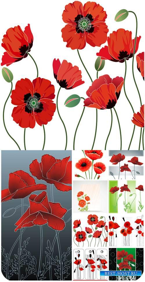 Красные маки в векторе / Red poppies vector