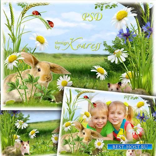 Детская рамка для фотошопа с луговыми цветами и пушистыми обитателями полей ...
