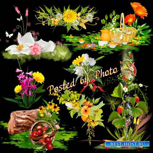 Кластеры на прозрачном фоне - Цветочные полянки