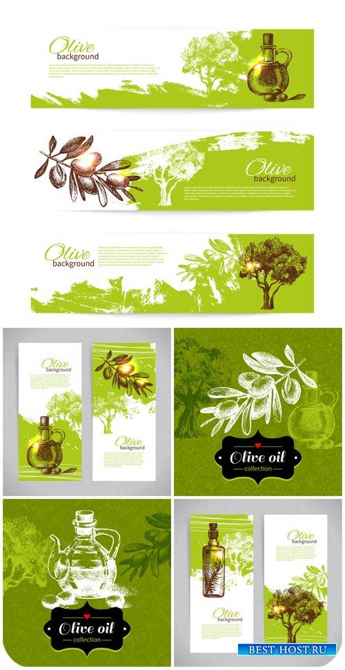Оливки, фоны и баннеры в векторе / Olives, backgrounds and banners vector