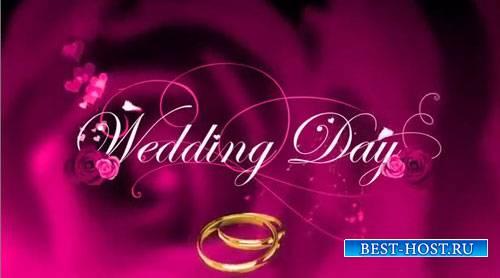 Свадебный проект для ProShow Producer - День свадьбы