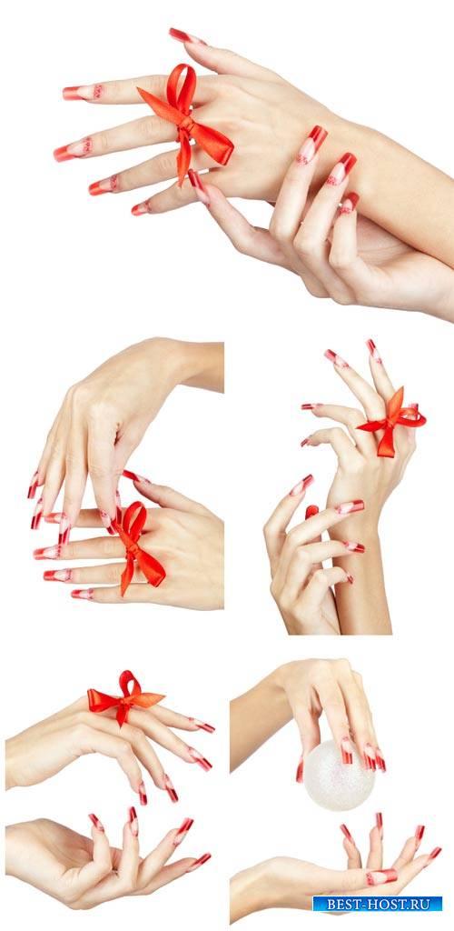 Женские руки, красивый маникюр / Female hands, beautiful manicure - Stock p ...