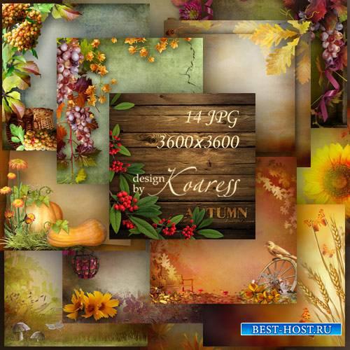 Осенние фоны для дизайна с цветами, грибами, ягодами, листьями - Разноцветн ...