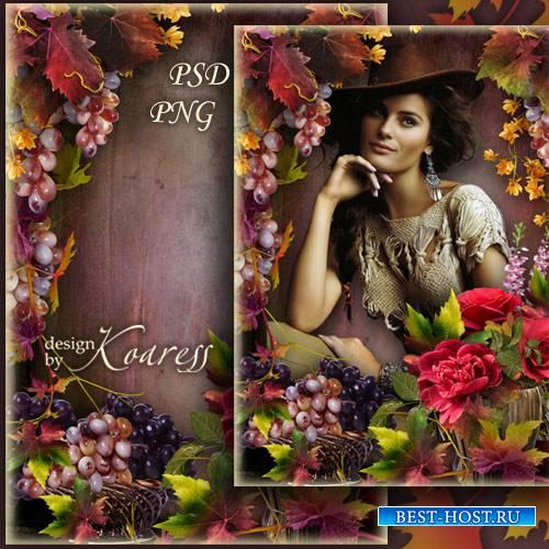 Романтическая рамка для фотошопа с розами и виноградом - Осеннее великолепи ...