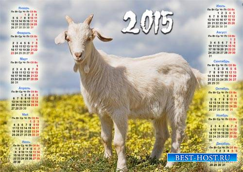 Красивый календарь - Коза на поле