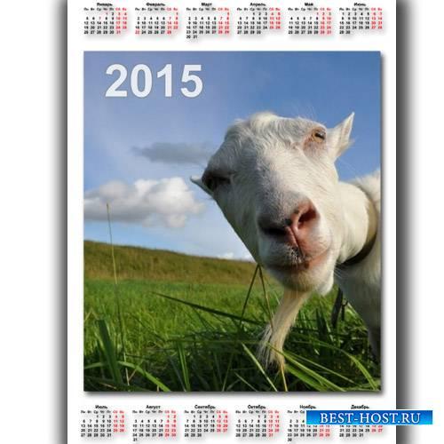 Календарь - Коза в объективе