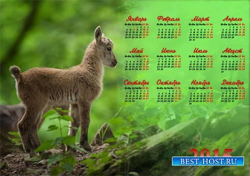 Календарь 2015 - Милый козленок
