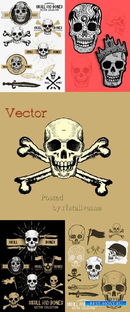 Подборка векторного клипарта – Черепа и кости