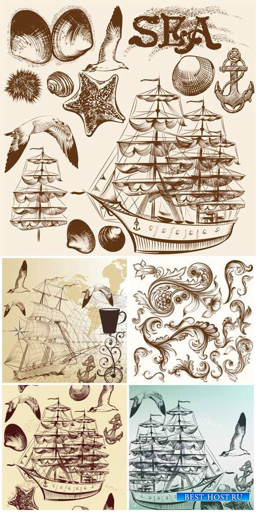Marine vector, decorative elements