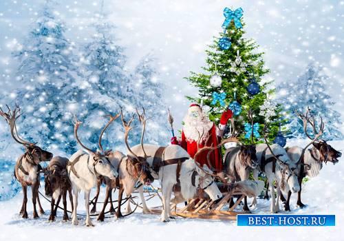 Шаблон для фотошопа  - Санта и олени