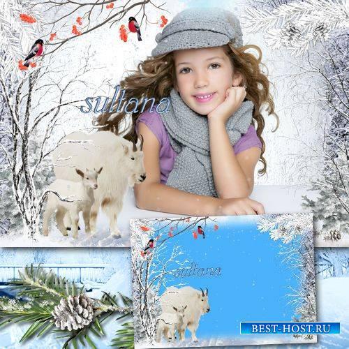 Зимняя рамка для фотошопа - Белые козы