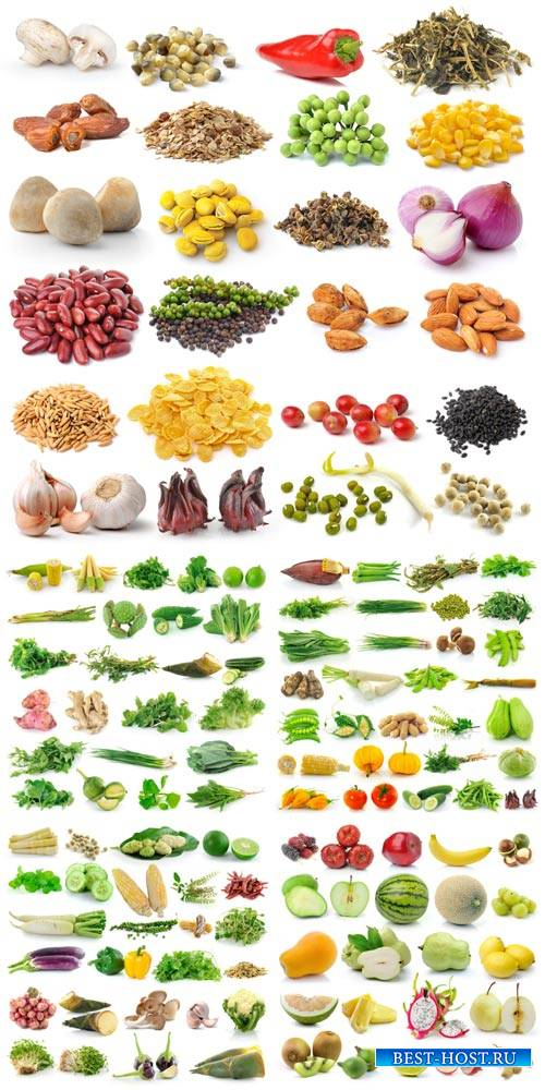 Vegetables, fruits, greens - stock photos