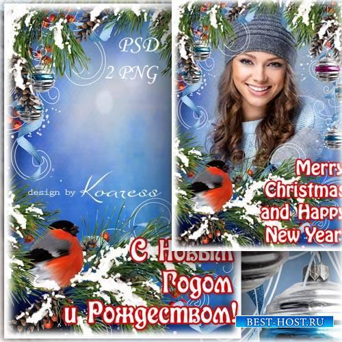 Поздравительная рамка для фотошопа со снегирем - С Новым Годом и Рождеством