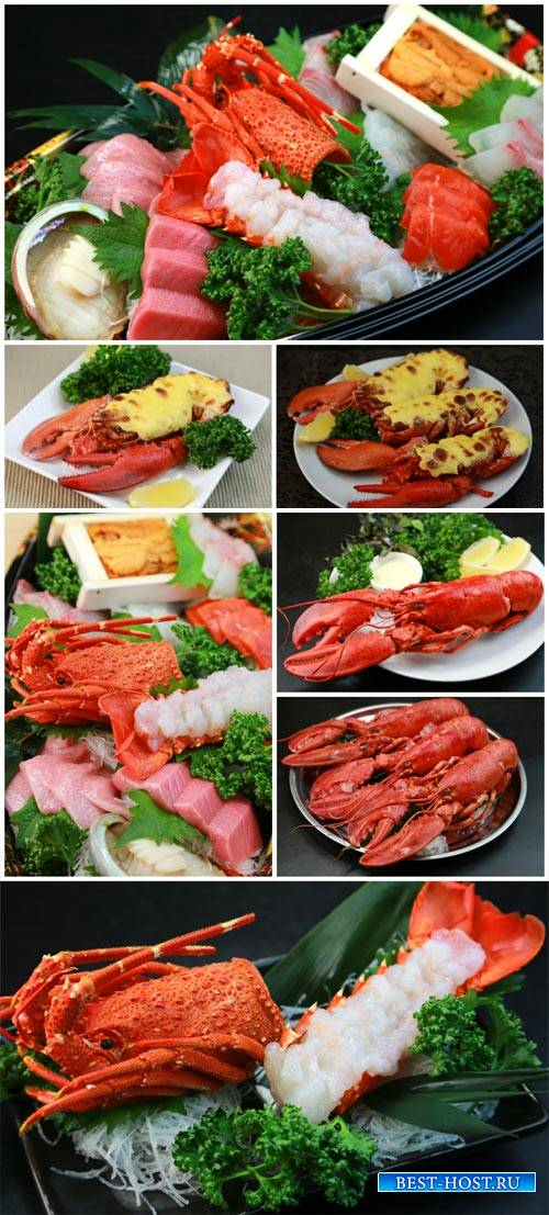 Lobster, seafood - stock photos