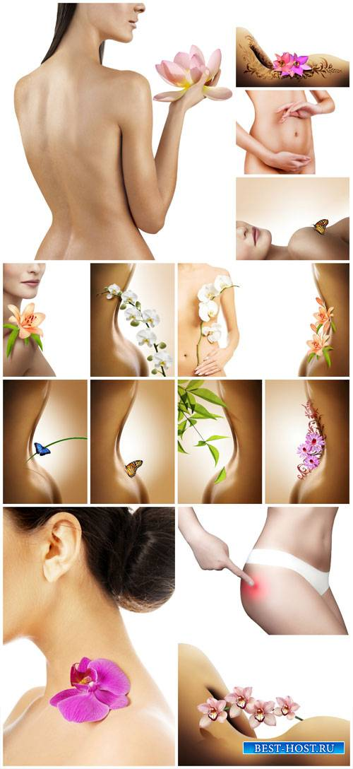 Naked female body and flowers - Stock Photo