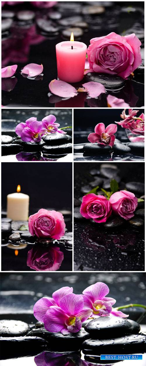 Roses, orchids and candles, spa backgrounds - Stock photo