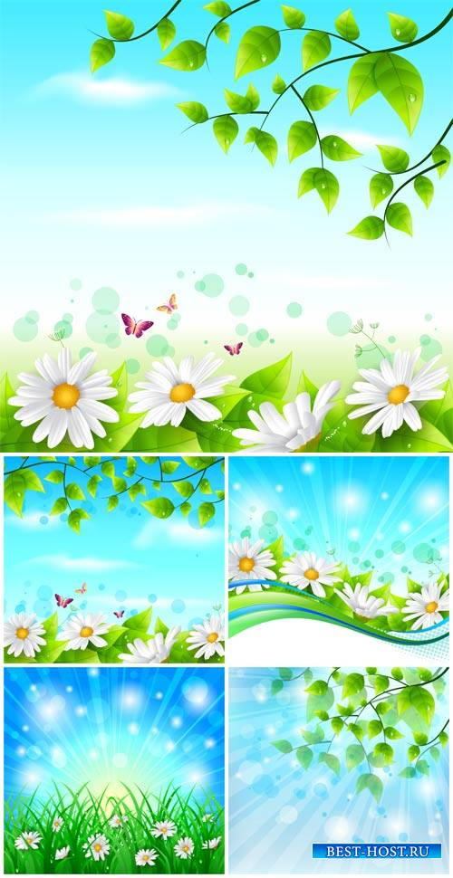 Vector backgrounds, nature, flowers and butterflies