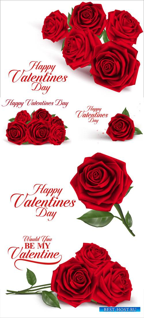 Red roses, happy Valentine's day vector