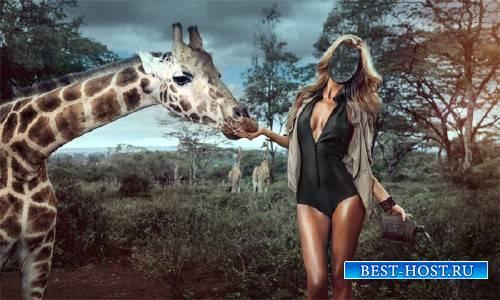 Шаблон psd женский - Прогулка по Африке
