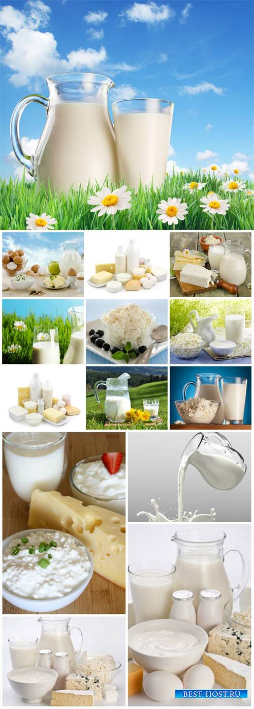 Milk and milk products - stock photos