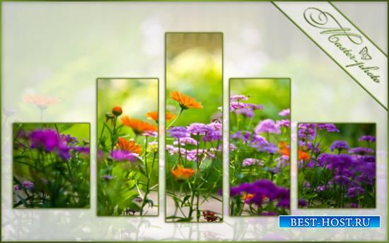 Полиптих для photoshop - Аромат полевых цветов