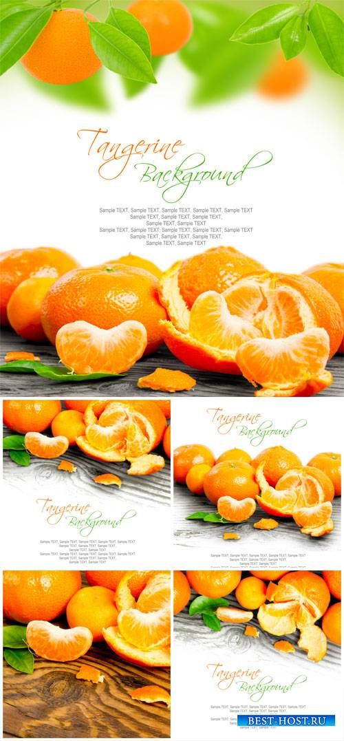 Tangerines - stock photos