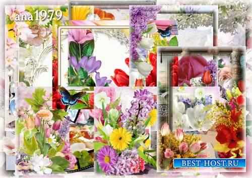 Набор рамок png - Весна в окно стучится