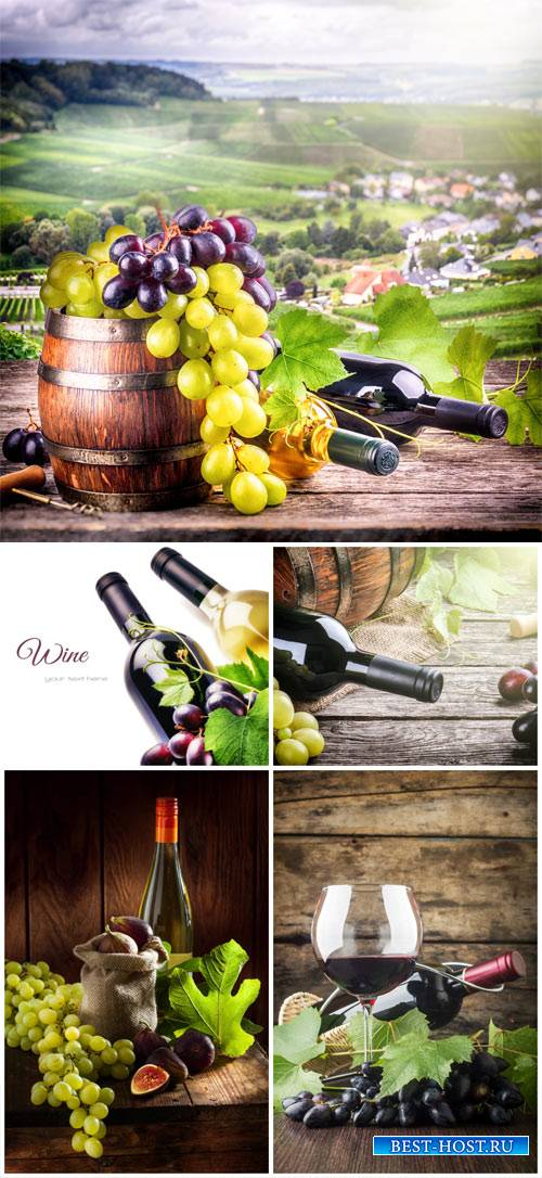 Wine and grapes - stock photos
