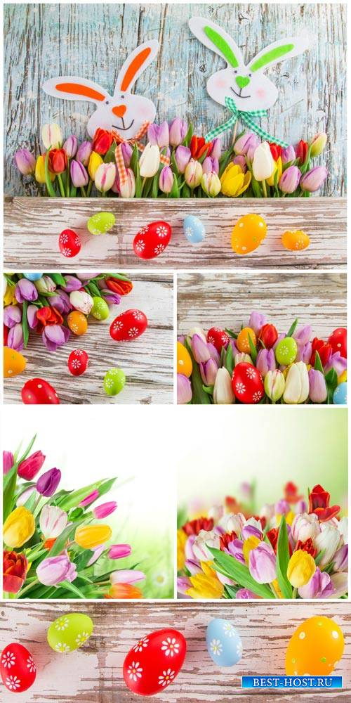 Happy Easter, Easter bunnies and tulips - stock photos