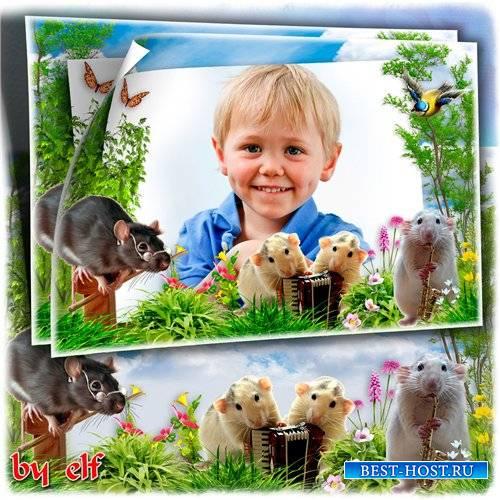 Рамка с забавными мышатами для детских фото - Мышиный квартет