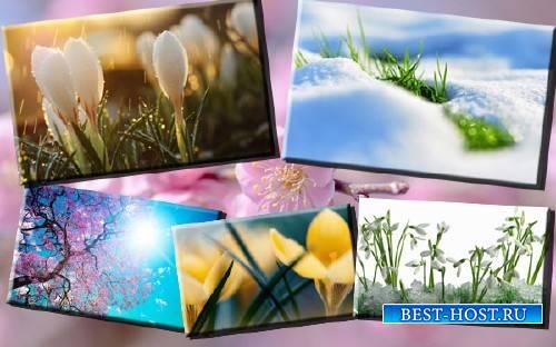 Клипарты для фотошопа - Весенняя природа