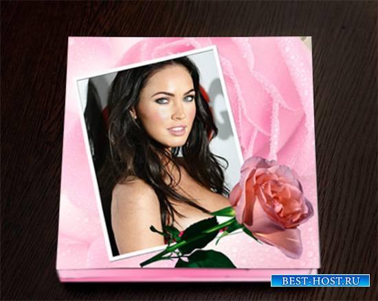 Фотокнига - Розовые розы