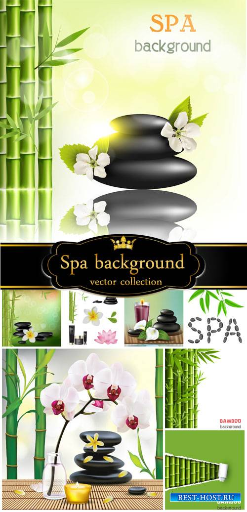 Spa background in vector, bamboo and orchids