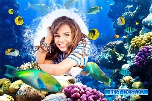 Рамка для фотографии - Мир под водой