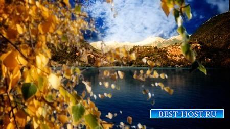 Футаж - Золотая осень в горах