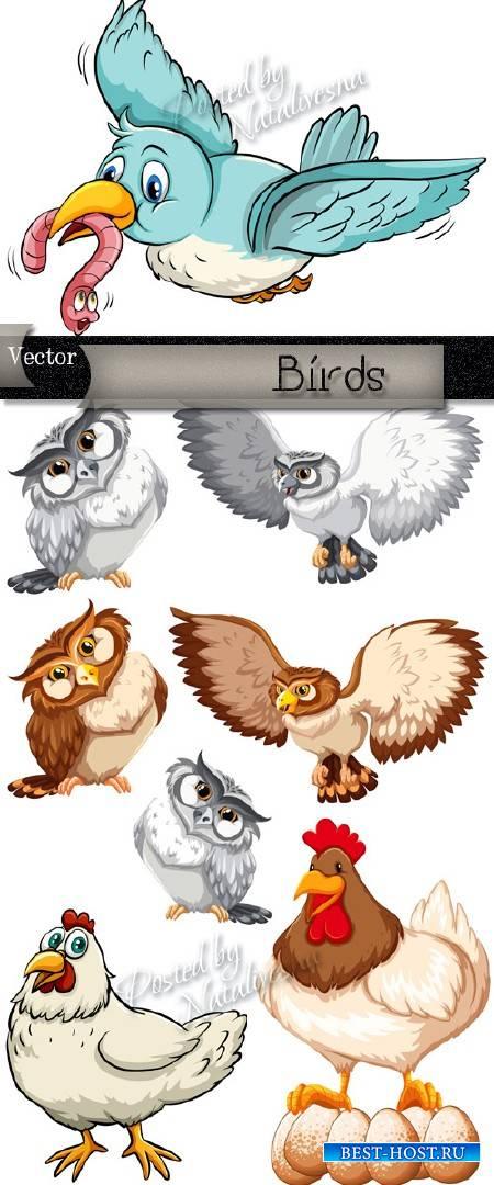 Красивые птички в Векторе – Совы, воробьи  и  курочки