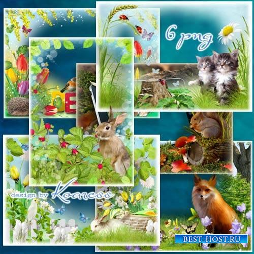 Детские рамки для фотошопа с животными - Серый зайка на лесной полянке