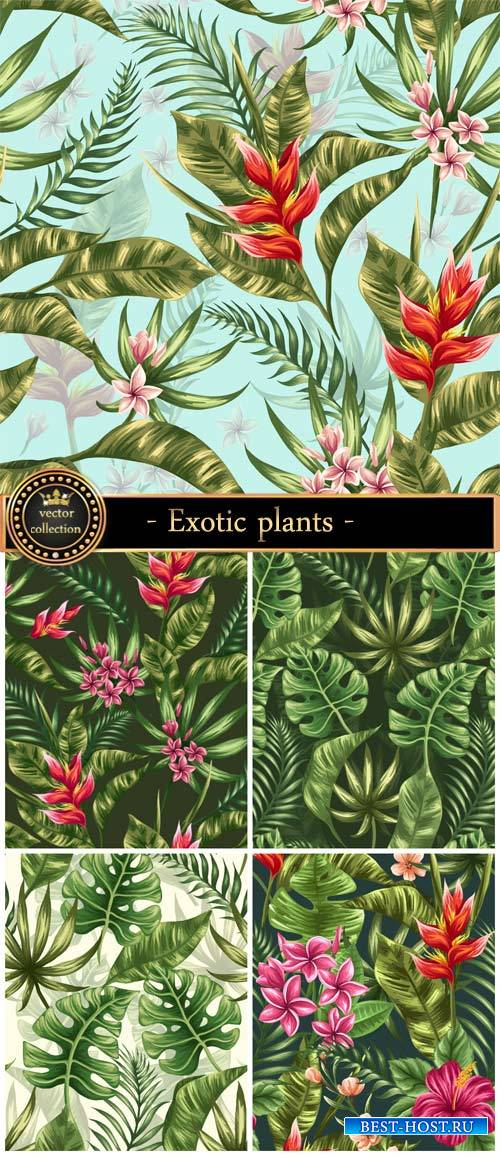 Vector backgrounds with exotic plants