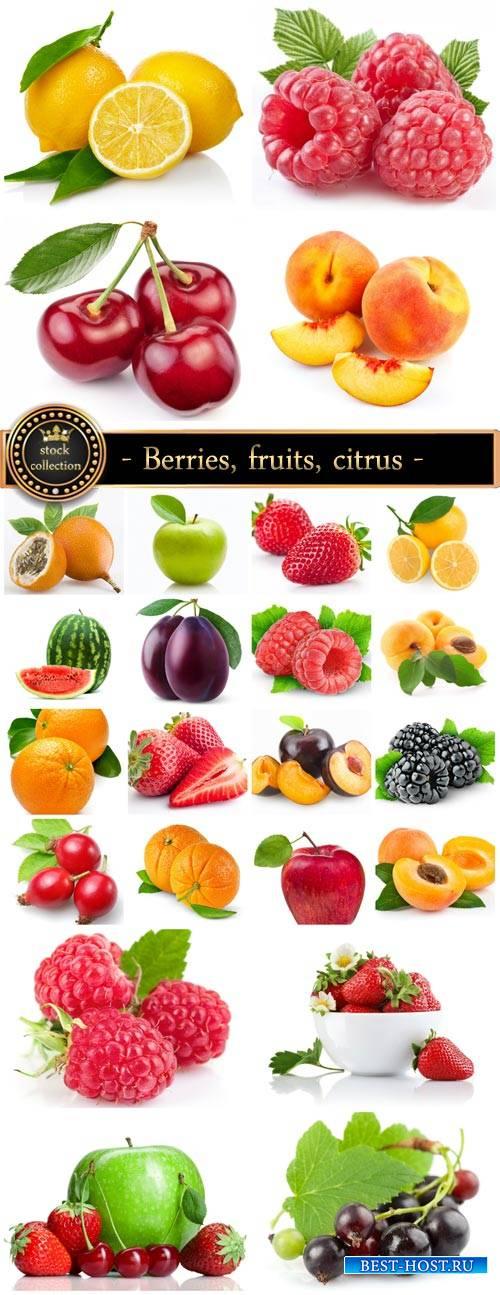Berries, fruits, citrus - stock photos