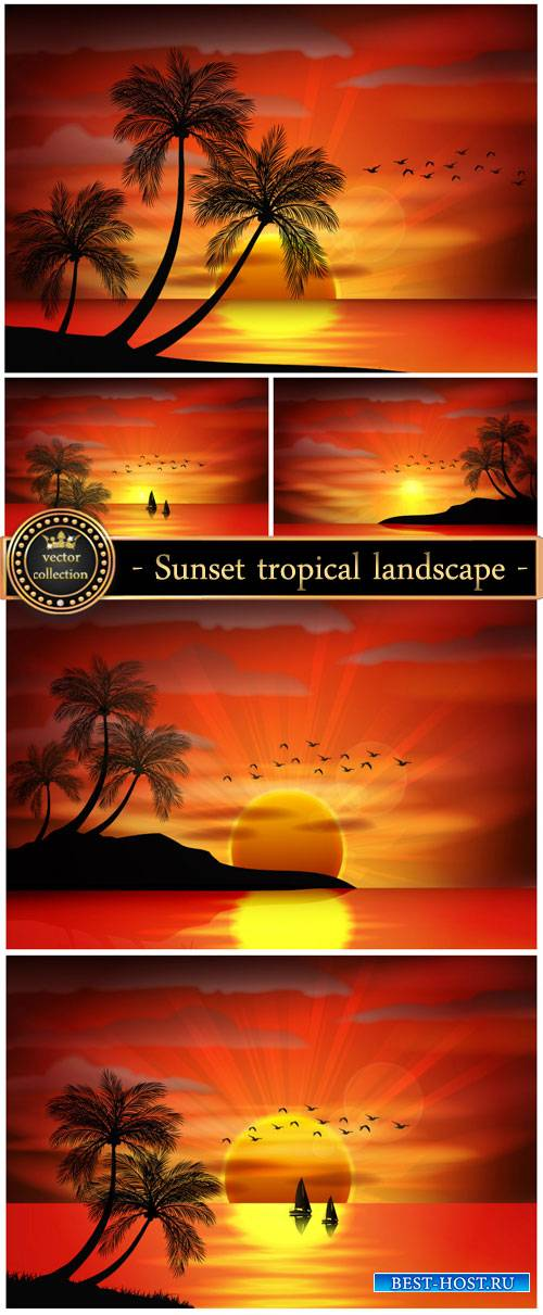 Sunset, vector tropical landscape