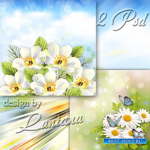 Многослойные фоны - Сияют белые цветы и в сердце аромат струится