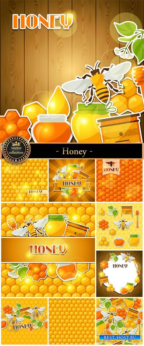Honey, vector backgrounds with bees